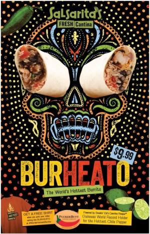 The BurHEATo™