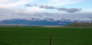 Glacier Mountains - Bynum, Montana