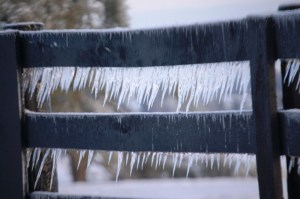 Icicle Fence - Jacobson Park, Lexington, KY