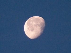 Big Moon - Lexington, KY