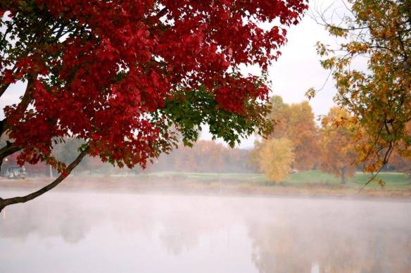 Morning fog on an autumn day