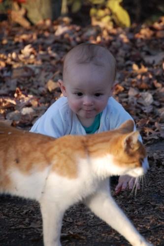 Fun with a cat in 2008