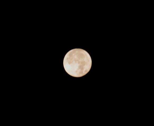 Early Morning full moon on Thanksgiving Morning
