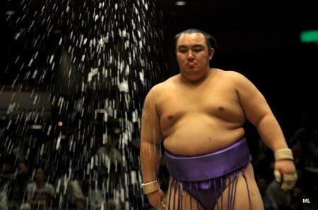 El Maegashira Kotoyuki no estará en el Hatsu Basho (Foto: Martina Lunau)