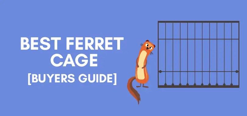 top 5 ferret cage