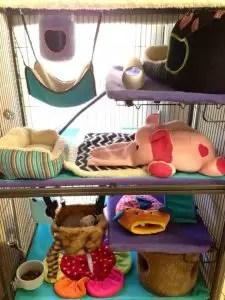 DIY Ferret Cage Idea #4