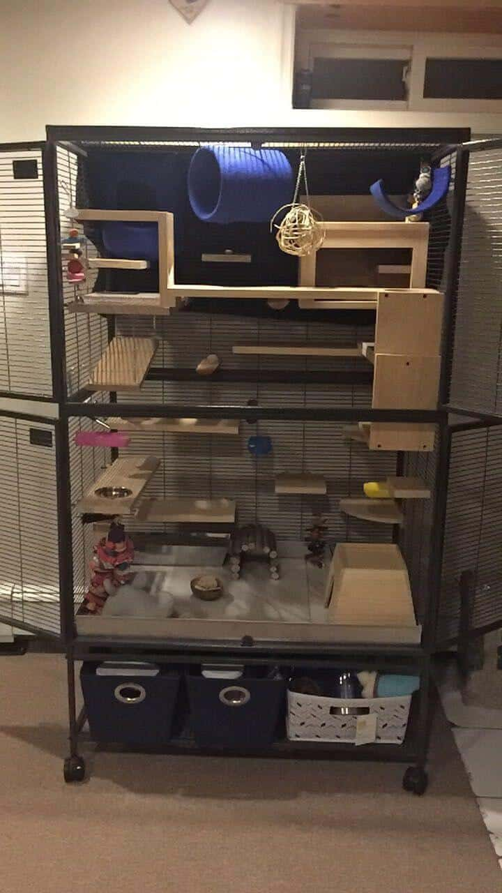 DIY Ferret Cage Idea #5