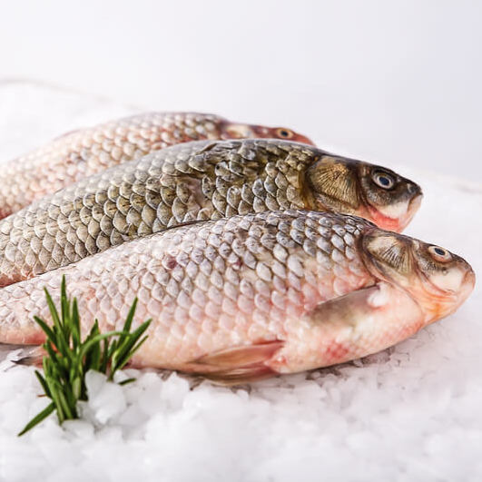 Fish and Seafood - Choose the fish and seafood specialties you prefer and get them delivered to wherever you are. Fish Whole Fish Fillets Seafood Smoked Fish Canned Fish
