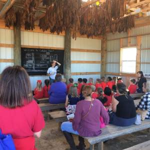 Cullipher Farms Field Trip