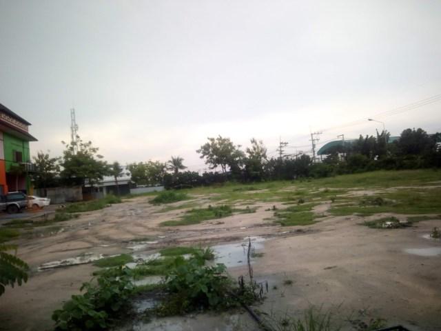 Парк Мимоза в Паттайе