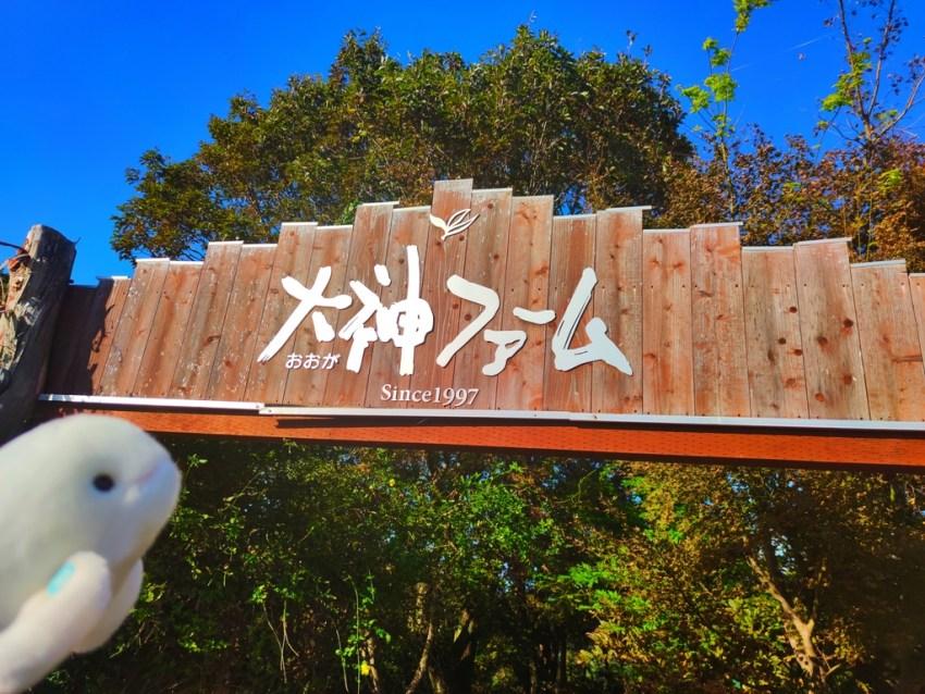 【日出町 大神ファーム】ハーブ・バラと自然が魅力の植物園🌹四季折々の癒し農園