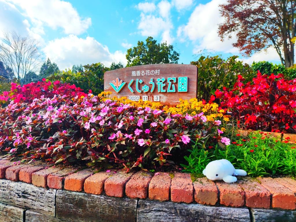 【竹田市 くじゅう花公園(秋編)】大自然の中の植物公園!秋の花を多数観察🍂
