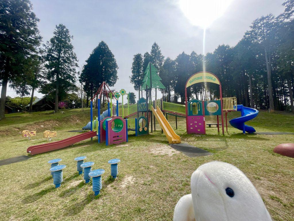 【杵築市 横岳自然公園】家族で遊べる!キャンプも出来る自然の中のアスレチック公園!