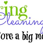 Tips For Spring Cleaning Before You Move