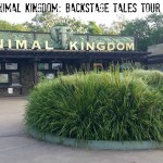 Tales And Tails: Disney's Backstage Tales Tour #MonkeyKingdomEvent