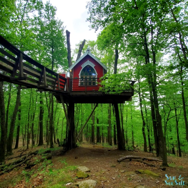 Treehouse Masters Little Red Treehouse in The Mohicans