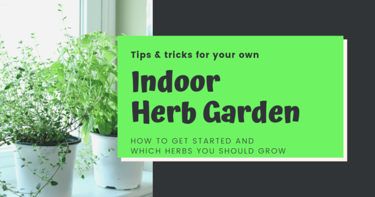 Tips For Growing Your Own Indoor Herb Garden