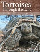 Tortoises Through The Lens