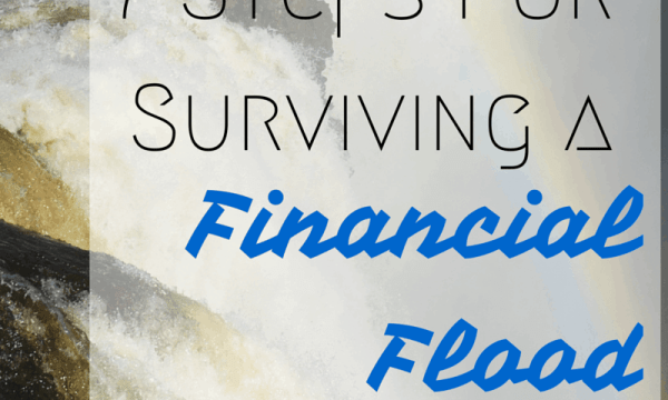 7 Steps for Surviving a Financial Flood via @sunburntsaver