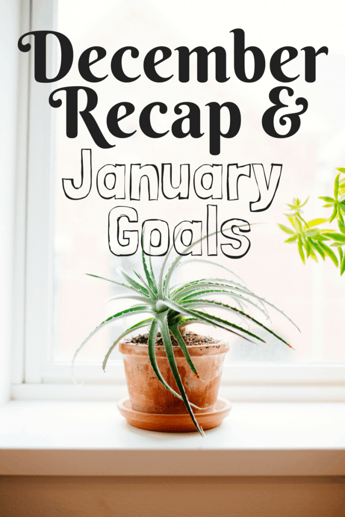 December Recap and January Goals for end of 2014/beginning of 2015! Happy New Year from Sunburnt Saver :)