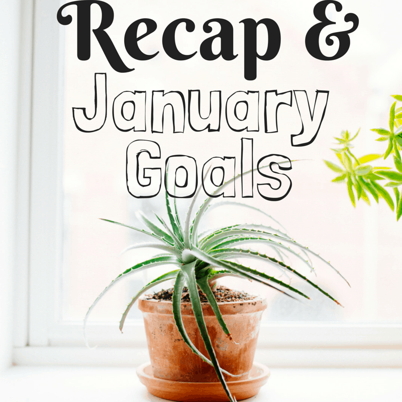 December Recap & January Goals