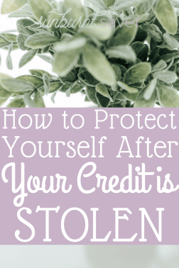 What can you do after your credit is stolen? It's important to think long term whenever you hear of a data breach - here's how to handle stolen credit.