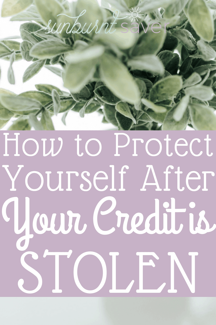 What can you do after your credit is stolen? It's important to think long term whenever you hear of a data breach - here's how to handle stolen credit. #credit #creditreport