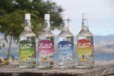 Suncoast Fiji Cocktail Training 30