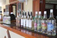Suncoast Fiji Cocktail Training 36