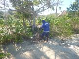 Nananu-i-Ra Island Beach clean-up - August 2018 01