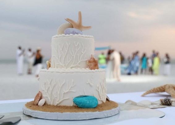cake shore