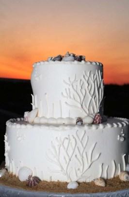 sunset cake shells
