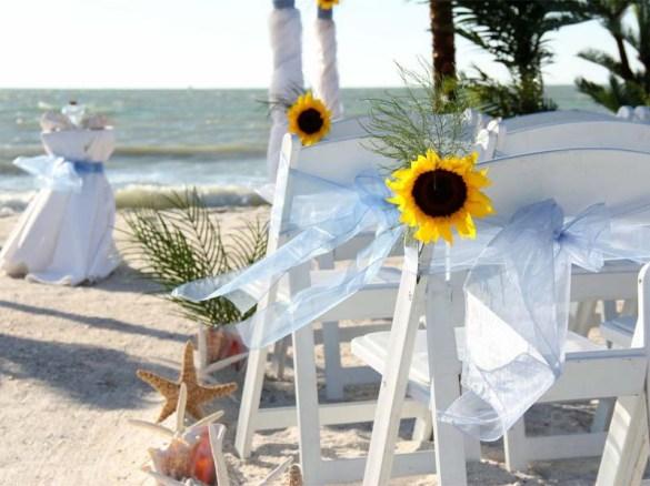 chairs sunflowers