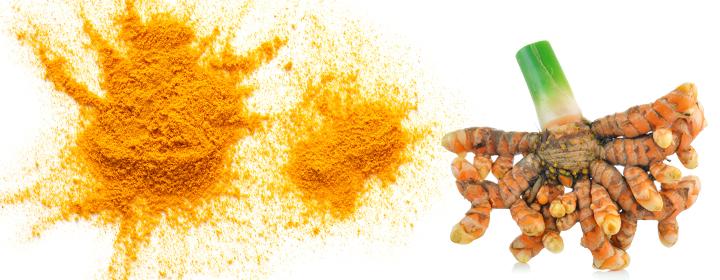 De aktive stoffer fra gurkemeje i en ny og anderledes indpakning