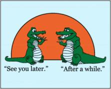 so long alligators