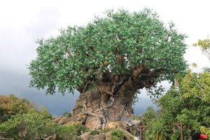 The World of Avatar will be in Animal Kingdom at Disney World soon!