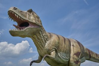 Sundance Vacations Dinosaur