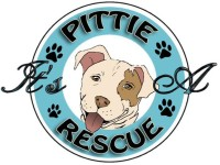 sundance vacations its a pittie rescue