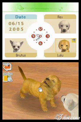 nintendogs: too doggoned cute!   video games rock