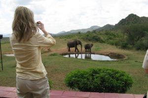 ngulia-safari-lodge-elephants
