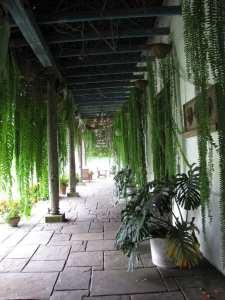 Jardins do Museu Larco