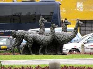 O que fazer em Lima: Llama, llama, llama