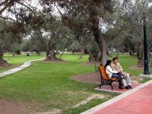 O que fazer em Lima: Passear pelos parques