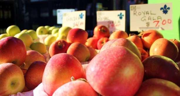 Mercados em Montreal - mais maçãs