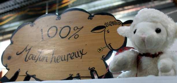 Mercados em Montreal - 100% ovelha