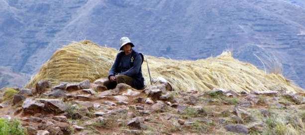 Valle Sagrado - Trabalhador
