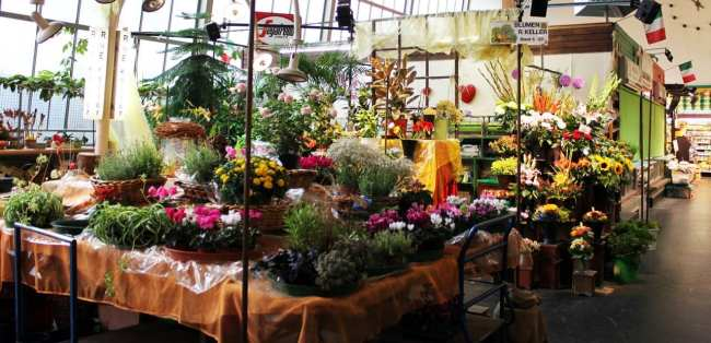 Mercados de Frankfurt - Kleinmarkthalle: Flores