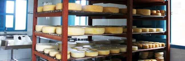 Serra da Canastra - Produção de Queijo Canastra da fazenda Agro Serra