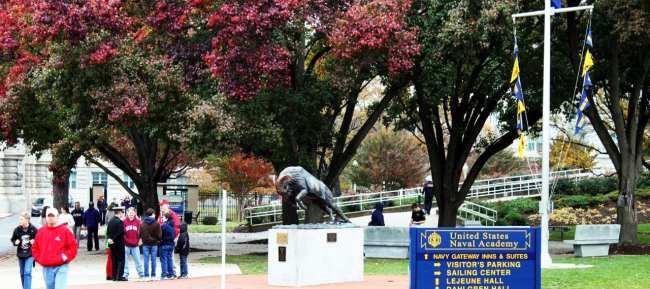 O que fazer em Annapolis - Navy Academy mascote