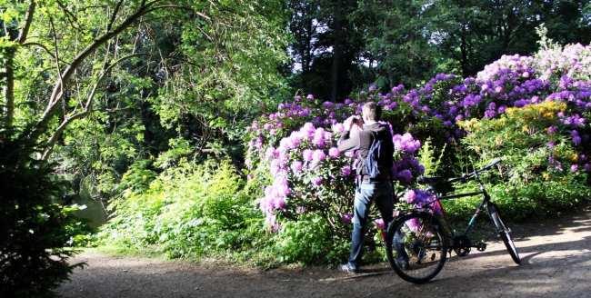 Tiergarten de Berlim - passeio de bike-táxi 5